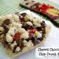Cherry Chocolate Chip Crumb Bars