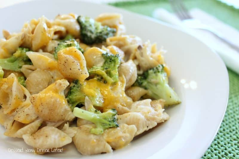 Chicken & Broccoli Alfredo Shells is a great way to use leftover rotisserie chicken in a cheesy pasta casserole. An easy dinner the whole family will love!