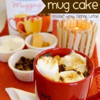 S'mores Mug Cake