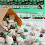Mint Truffle Muddy Buddies