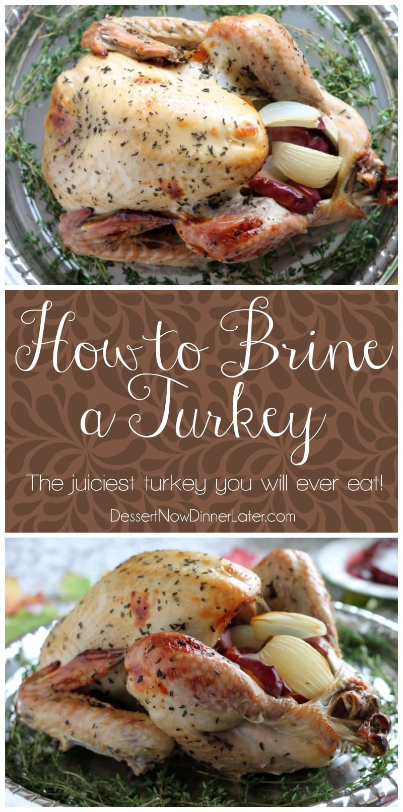 Step-by-step photo instructions on how to brine and cook a turkey to juicy perfection! From DessertNowDinnerLater.com