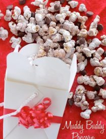 Muddy Buddy Popcorn - air popped corn, coated in chocolate, peanut butter, and powdered sugar. From DessertNowDinnerLater.com