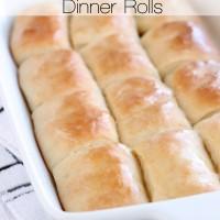 Beginner's Parker House Dinner Rolls