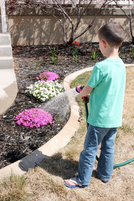 Get your kids involved with watering the plants and garden. They love to watch things grow!