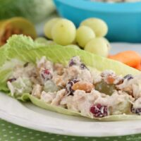 This lightened up chicken salad uses greek yogurt, a blend of seasonings, fruit, and nuts to give it its delicious flavor. Great with whole wheat bread or a lettuce cup, this skinny chicken salad will satisfy your hunger.