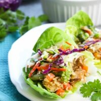 Teriyaki Chicken Wraps with Asian Slaw