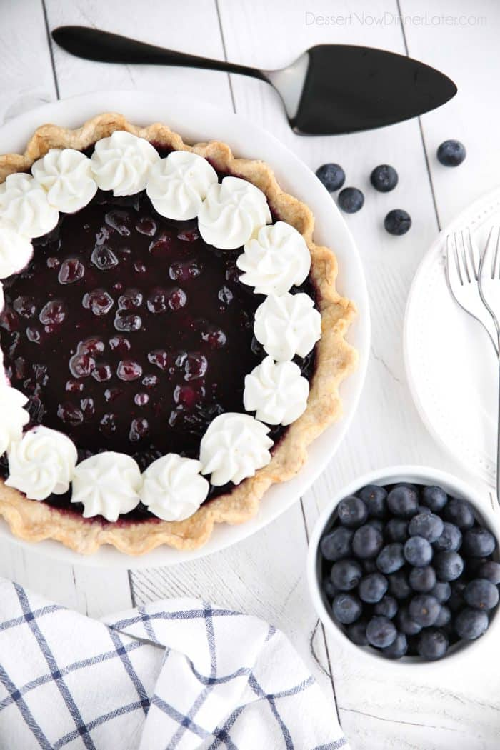 Blueberry Cream Cheese Pie with whipped cream on top.